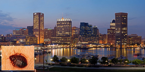 Baltimore's Skyline at night. Baltimore, Maryland, USA.