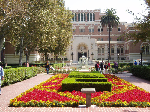 University of southern California Up and Coming Master's