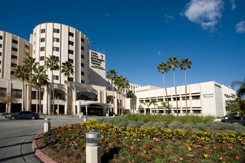 Loma Linda University HCM Top Online Public Health