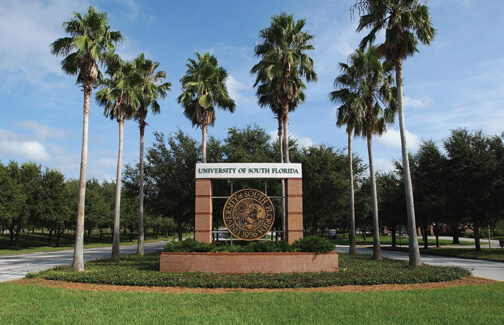 University of South Florida HCM Top Online Public Health