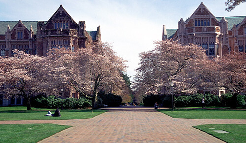 University of Washington HCM Top Public Ivy
