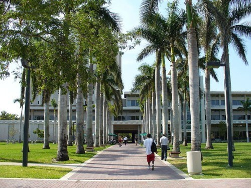 University of Miami Best HCM Masters Tuition Assistance