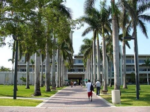 University of Miami Best Healthcare Management Certificate
