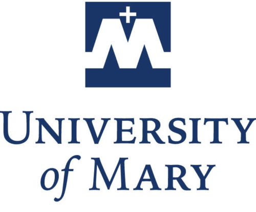 Top 20 Online Master's Degrees in Nursing Administration and